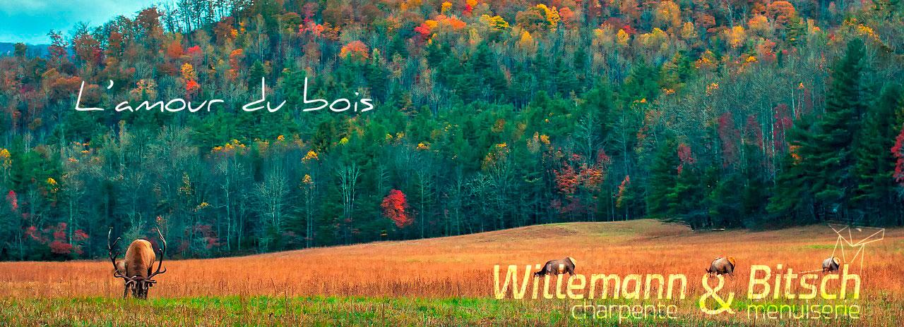 cerf-nature-environnement-paysage-menuiserie-bitsch-charpente-willemann