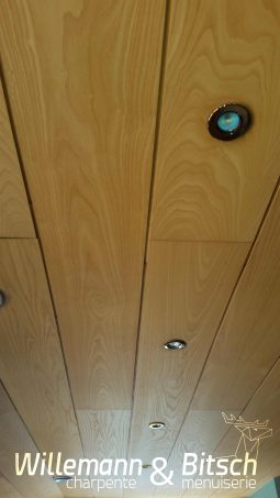revetement plafond spot mumineux lumière insert alsace burnhaupt
